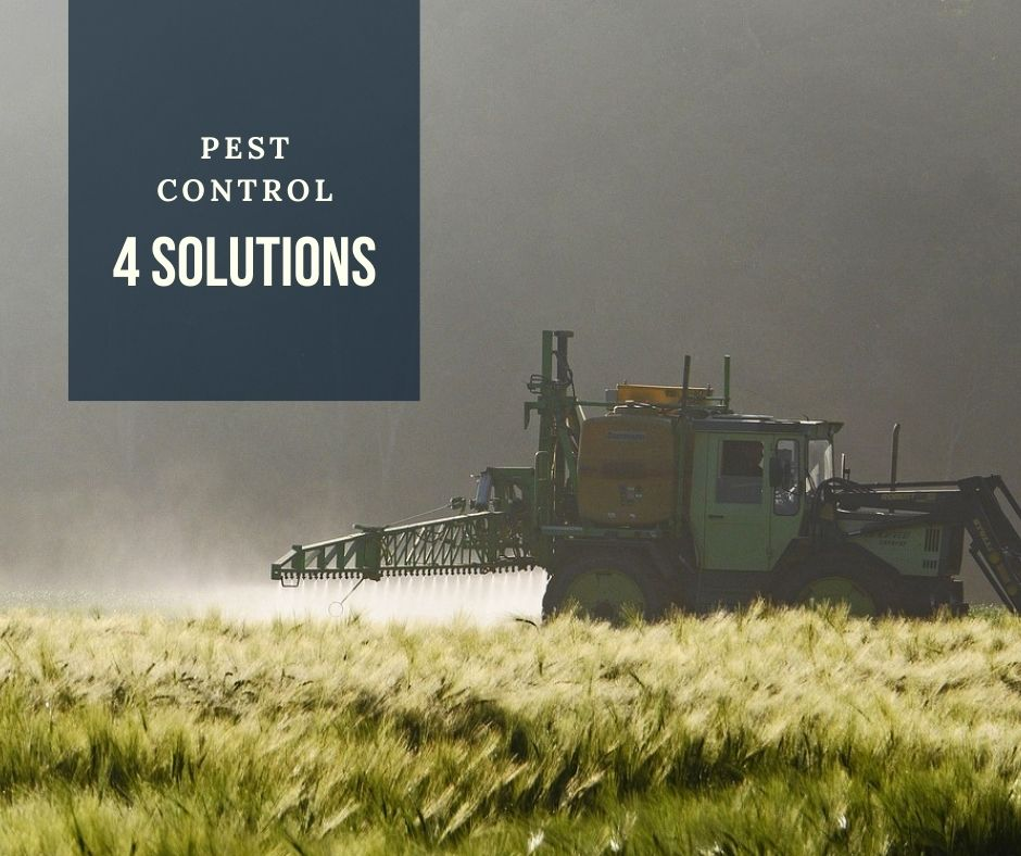 Solution to 4 common agricultural pest control problems