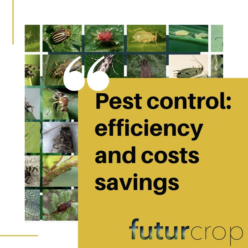 Pest control efficiency in Agriculture