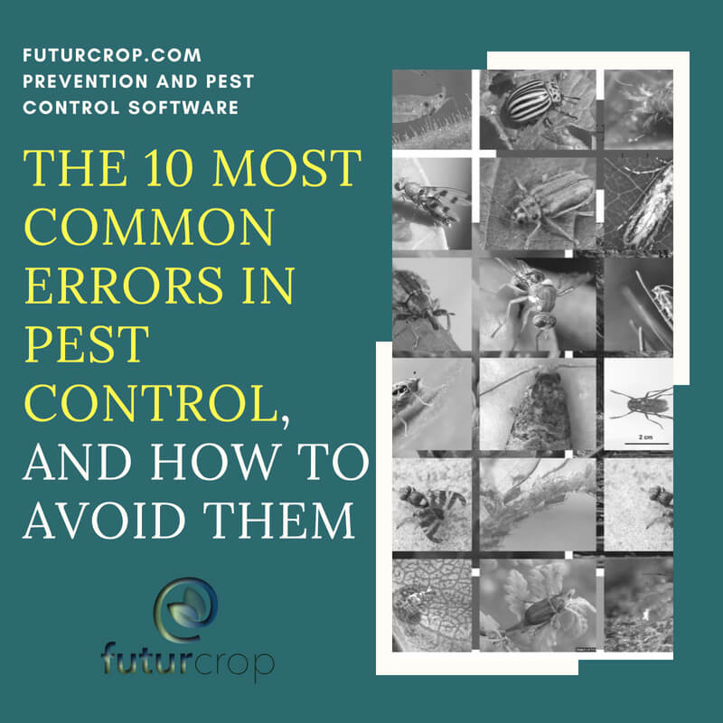 The 10 most common errors in pest control
