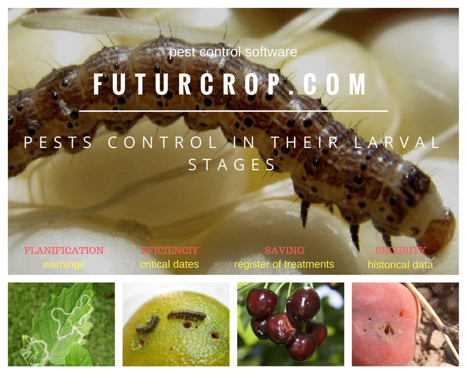 Agricultural pest control in their larval stages